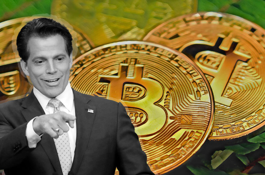 """Anthony Scaramucci says Bitcoin is """"as safe as bonds and gold"""" after $310m bet"""