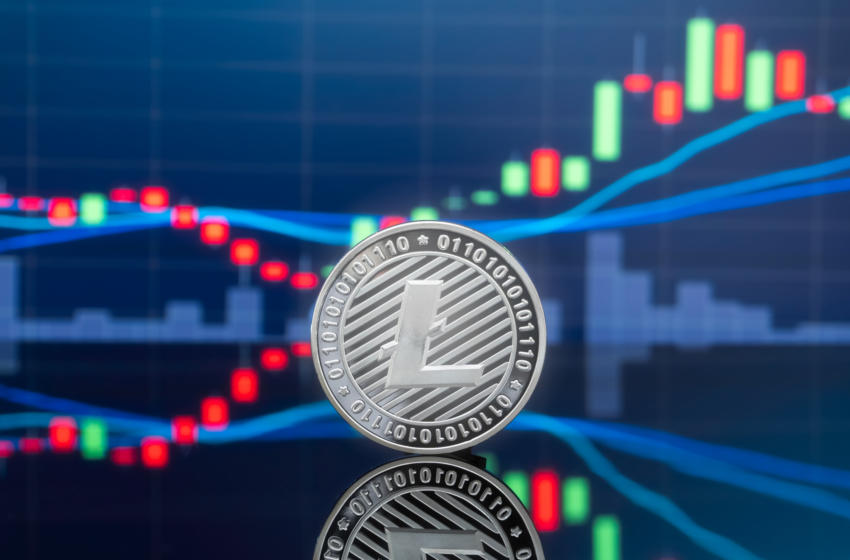 Litecoin Surges 20%, Will LTC Spark Another Major Crypto Rally?