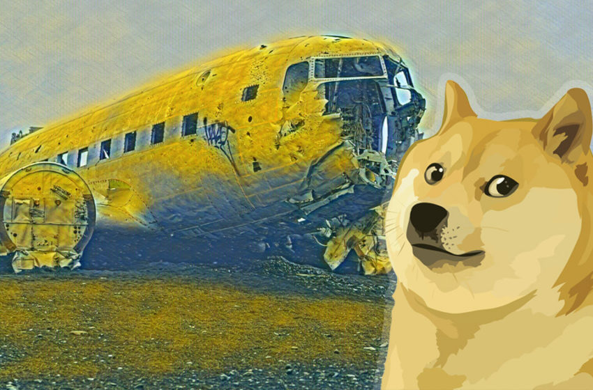 """Dogecoin """"supporters"""" turn on DOGE as Reddit-fueled craze ends with 50% correction"""