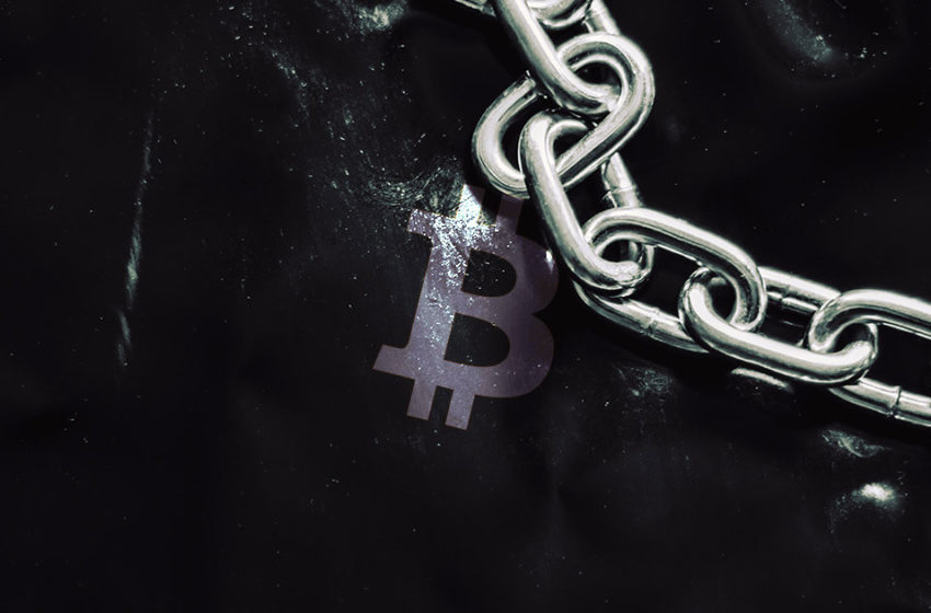 Four tech firms have bought 66% of all Bitcoin mined since August