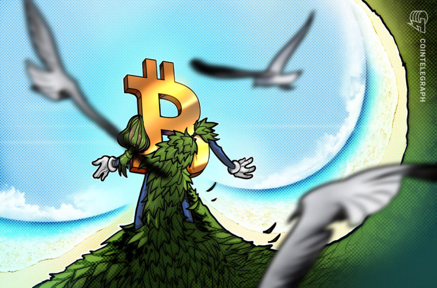 Carbon-neutral Bitcoin funds gain traction as investors seek greener crypto