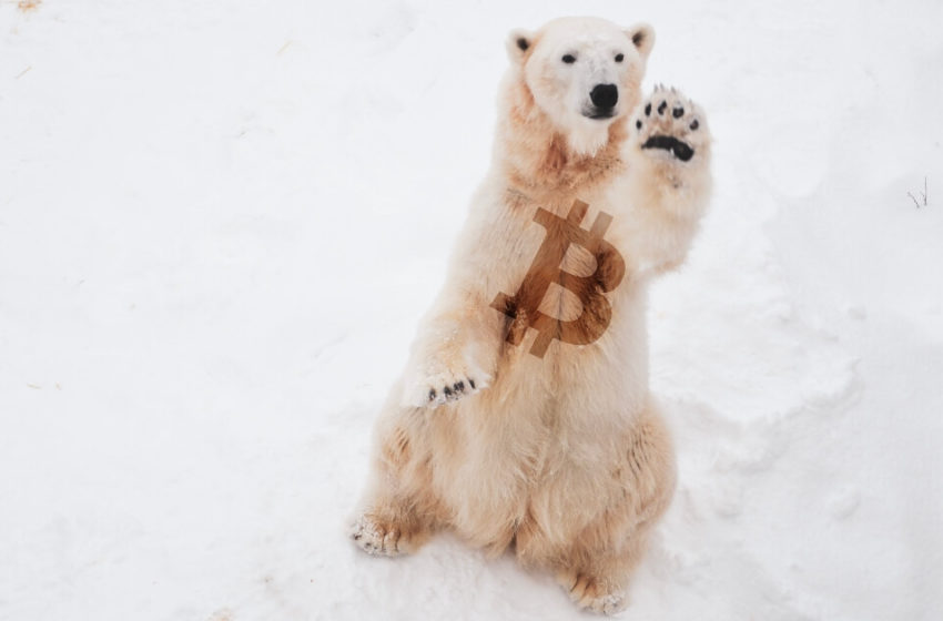 Bitcoin dumps to $38,500, $2 billion in crypto liquidations as market drops
