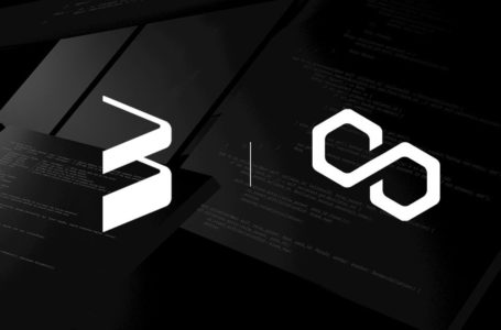 Web3 company announces Polygon fund to bolster MATIC ecosystem